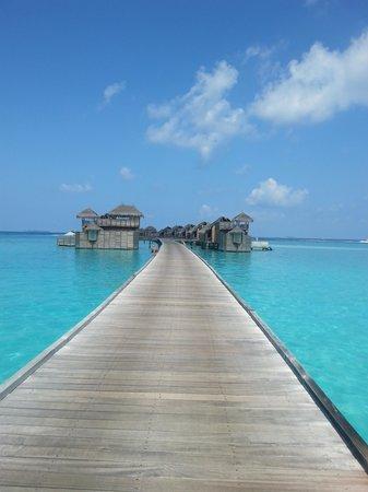Gili Lankanfushi Maldives : all natual no instragram needed
