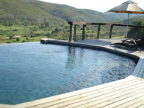 Botlierskop Private Game Reserve: Game Lodge - Infinity Pool