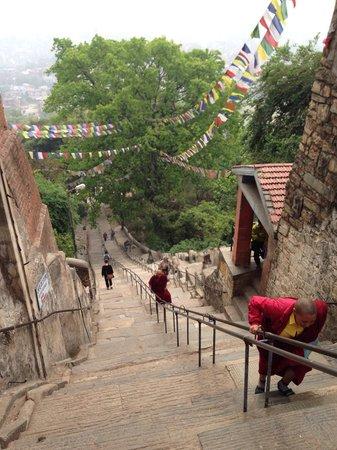 Swayambhunath Temple: The stairs walking up the Swayambhu