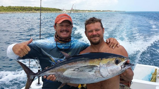 Fishing with Roberto Navarro : Many of the Bkackfins that we caught