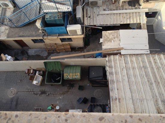 Ginot Yam Hotel: Вид под окном
