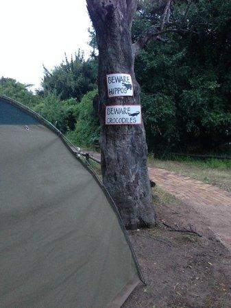Chobe Safari Lodge : Vårat tält