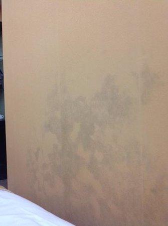 Regent Hotel: Mold on bedroom wall