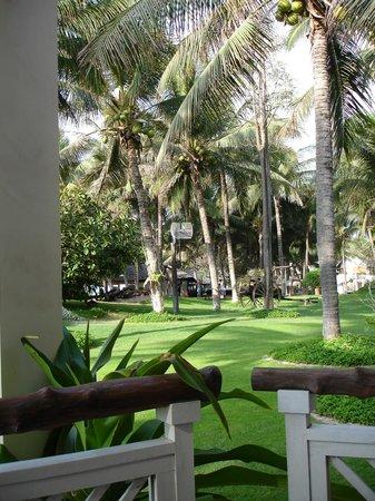Saigon Mui Ne Resort: Palmengarten