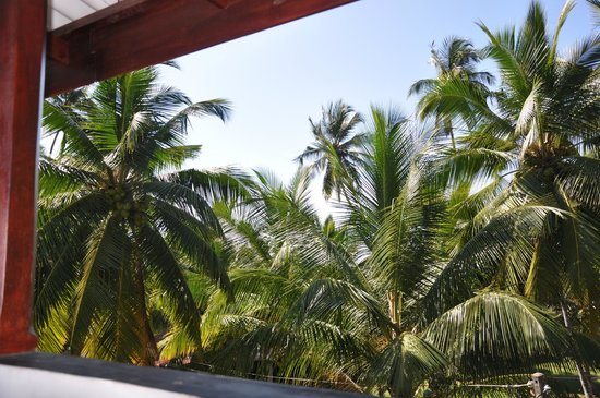 Seaview Deepal Villa: View from the balcony