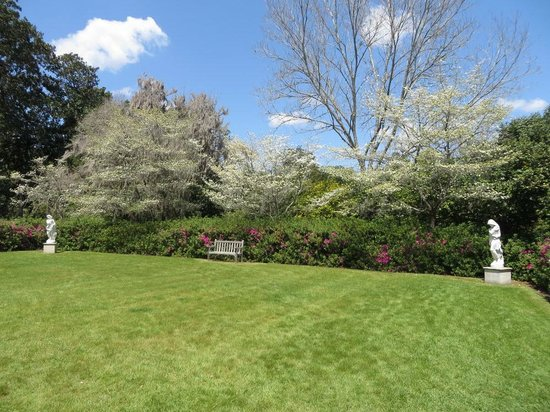 Inn at Middleton Place: Azaleas and Dogwoods blooming in a secluded Middleton courtyard