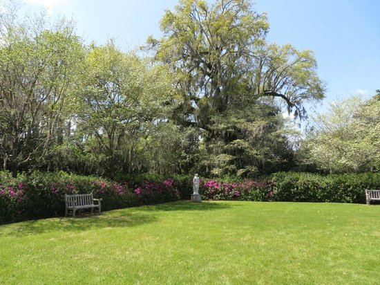 Inn at Middleton Place : Azaleas and beautiful statue