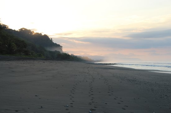 Corcovado National Park: early in the morning (Carate)