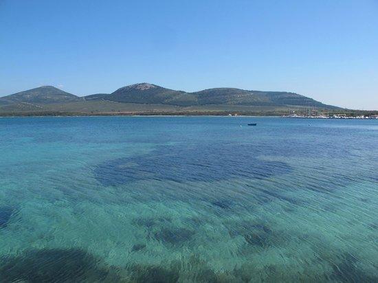 Port Conte Marina