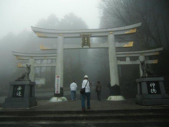 Mitsumine Shrine : 三ツ鳥居
