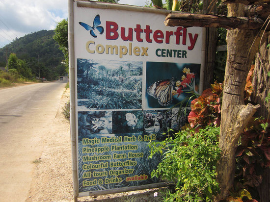 Butterfly Complex Center: Sign on the East Lanta Road