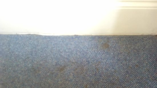 Royal Norfolk Hotel: Get a new carpet/get the steam cleaner/vax out. Filthy