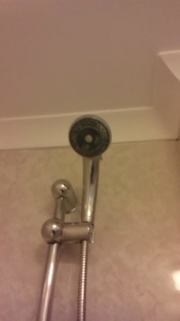 Royal Norfolk Hotel: Scaly shower head///uuuugggghhhh!!