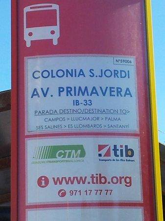 Es Trenc: Bus stop
