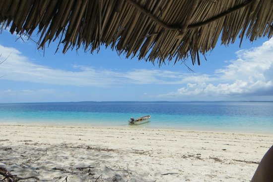 Fundu Lagoon: On the Island where you can snorkel and scuba