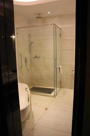 Pacific Regency Hotel Suites : Toilet need some clean due to stains on the shower n flooring