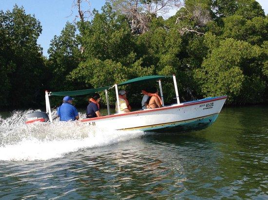 Laguna de la Restinga: Paseo en lancha por la laguna
