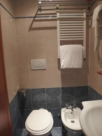 Hotel delle Muse: łazienka