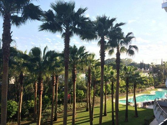 Senator Banus Spa Hotel: Bord de piscine