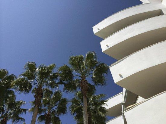 Senator Banus Spa Hotel: Bord piscine