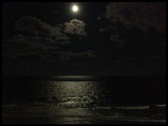 Sandy Beach Resort: night view of ocean