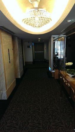 Taipei Garden Hotel : Hallway