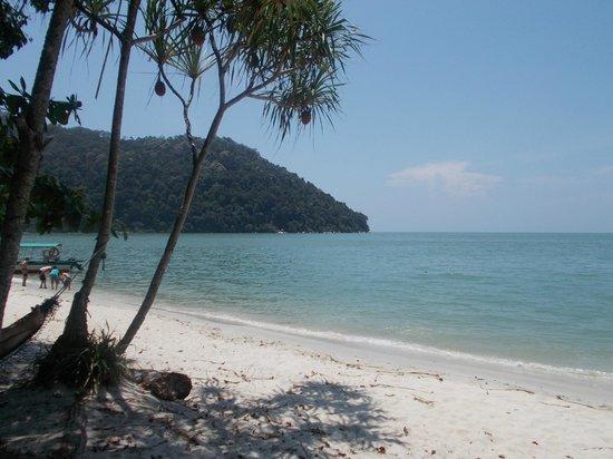 Penang National Park (Taman Negara Pulau Pinang): Monkey Beach