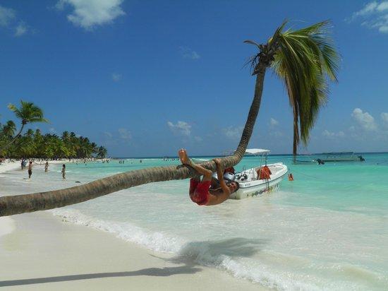 Iberostar Hacienda Dominicus: hermosa playa