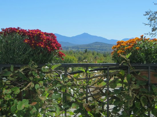 Mountain View Grand Resort & Spa: 2
