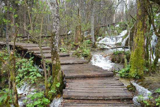 Plitvice Lakes National Park : walking on water