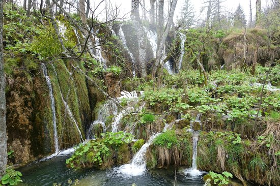 Plitvice Lakes National Park : so much greenery, even in early April
