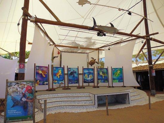 Forte Beach: 3