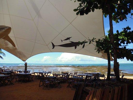 Forte Beach: 10