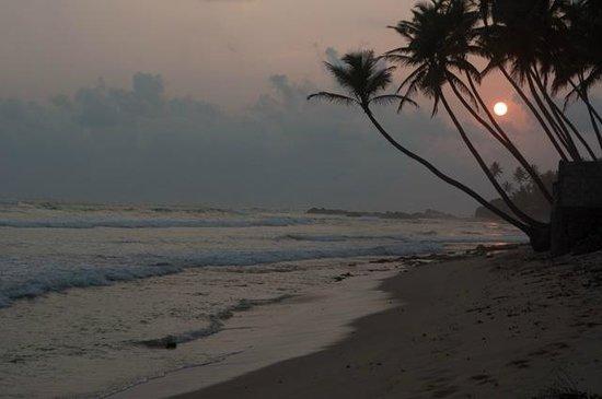 Apa Villa Thalpe : Beach
