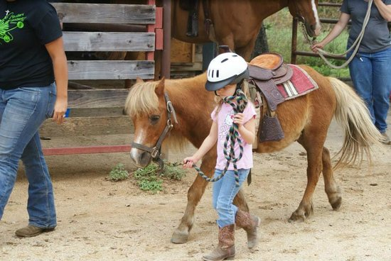 The Sugar & Spice Ranch : Perfect pairing of horses & riders!