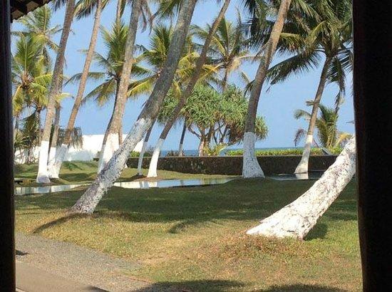 Apa Villa Thalpe : Garden