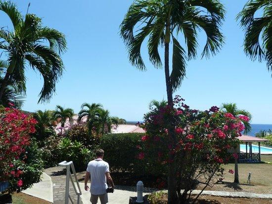 Villa Rayon Vert : beau jardin luxuriant
