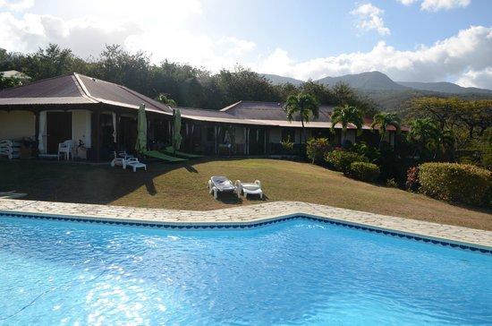 Villa Rayon Vert : très jolie piscine à débordement