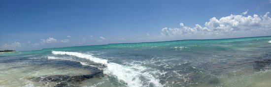 Petit Lafitte: Ocean View