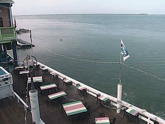 Louie's Backyard: View from LIVE tourist web cam on back deck