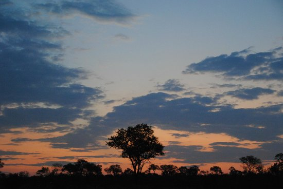 Singita Ebony Lodge: Sunset