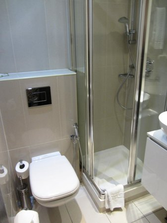 Hotel Edward Paddington: Bathroom (with rainwater shower head)