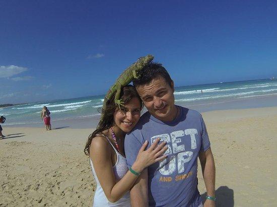 Macao Beach: Playa Macao