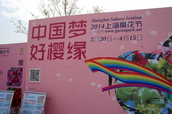 Gucun Garden : 2014 Shanghai Cherry Festival