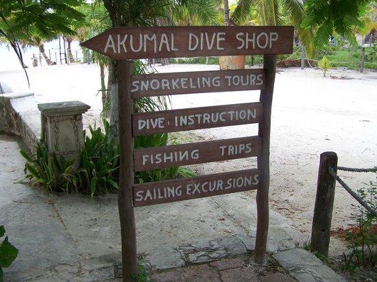 Akumal Dive Shop : akumal