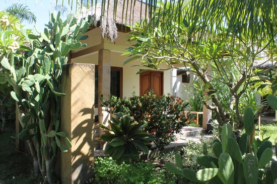 Coconut Dream Bungalows: Coconut Dream Family Room