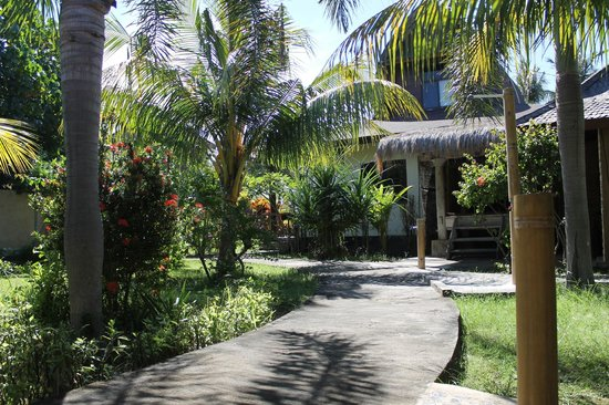 Coconut Dream Bungalows: Outdoors