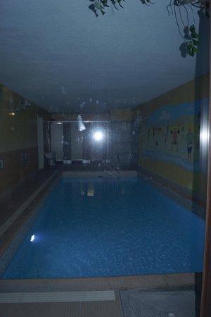 Flanders Hotel: Бассейн