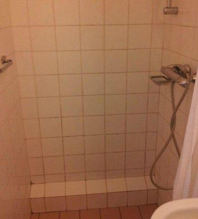 Fletcher Hotel-Restaurant De Scheperskamp: Filthy shower tiles