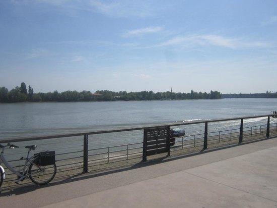 Seeko'o Hôtel : Vistas al río Garona